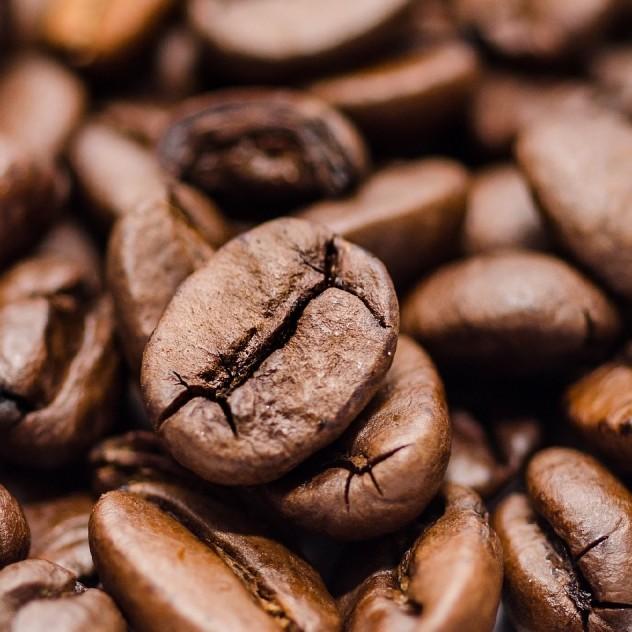 Entdecken Sie unsere Kaffees